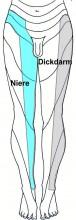 symptome segment di ni bein3