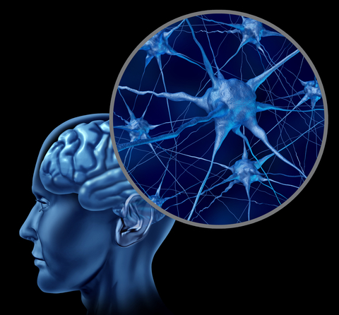Gehirn - Mentale Heilung
