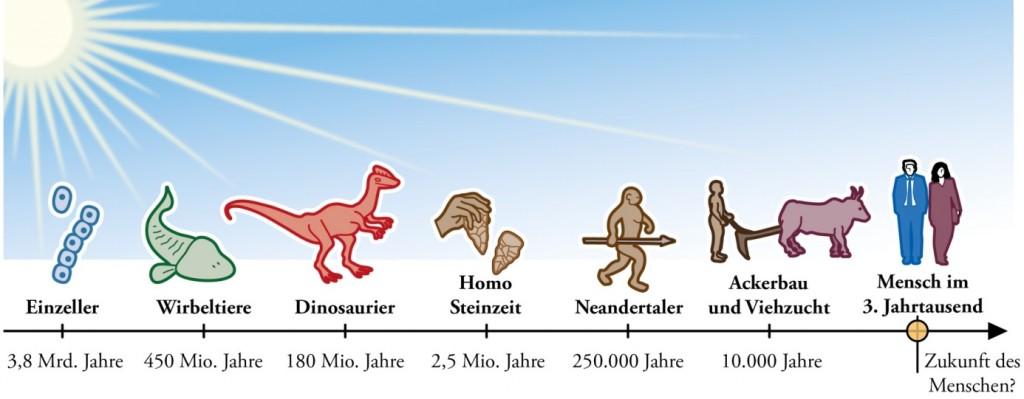 Sonne Evolution