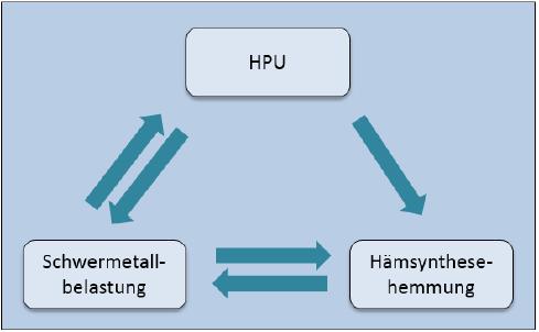 Schwermetalle und HPU