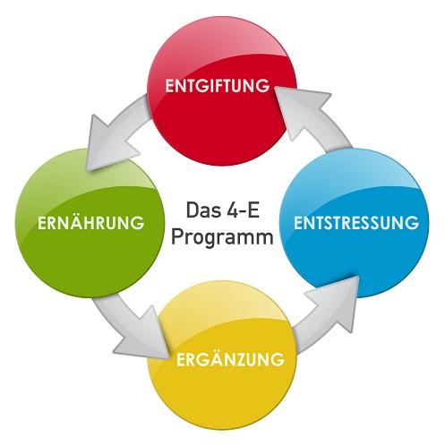 4E-Programm
