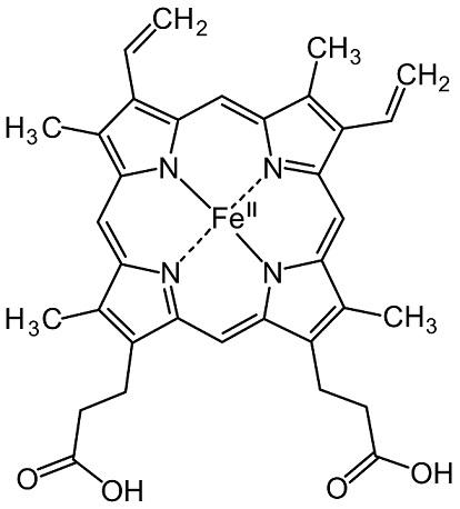 Häm-Struktur