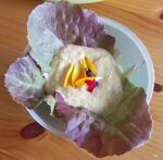 Curryquark auf Salat, garniert mit verschiedenen Blütenblättern.jpg