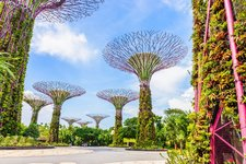 Singapur-Garden-by-the-bay.jpg